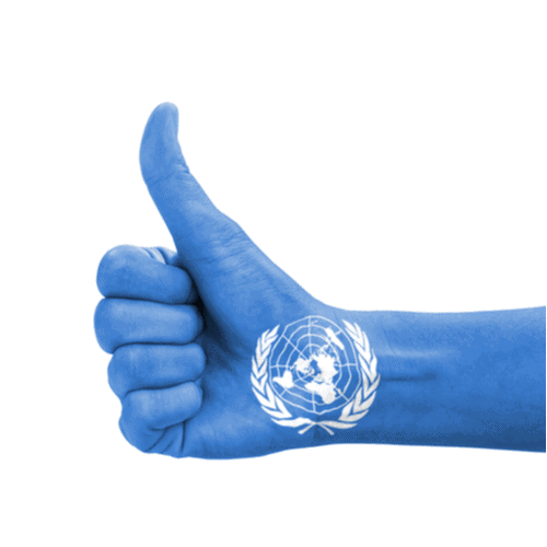 What opportunities are available for NGOs to work with the United Nations?