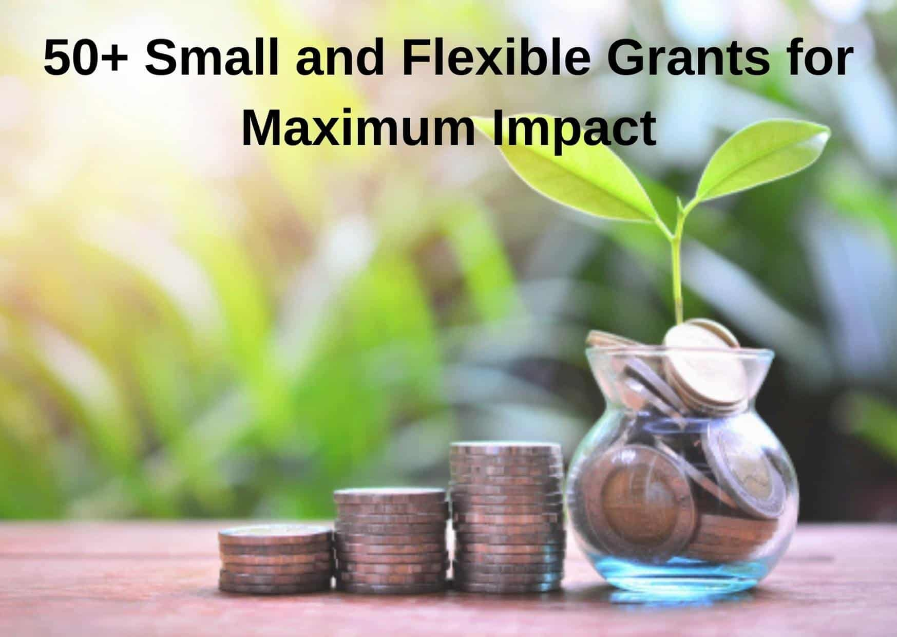 50+ Small and Flexible Grants for Maximum Impact