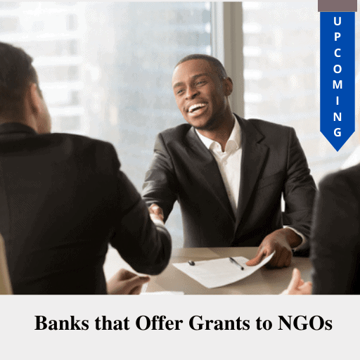 Banks that Offer Grants to NGOs