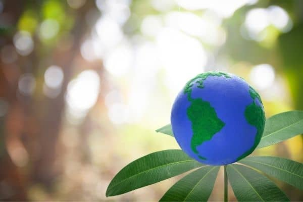 Top International Donors for Environmental Projects