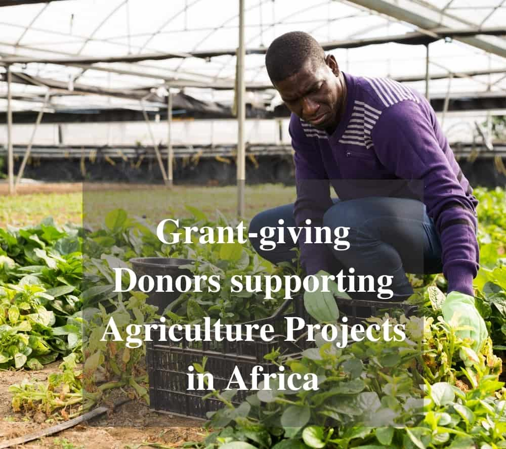 Grant-giving Donors supporting Agricultural Projects in Africa