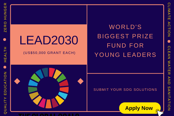 Lead2030 | £50,000 Grants for Young Leaders making an impact for the SDGs